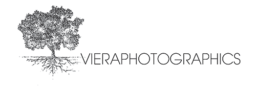 Viera Photographics Wedding Photographers: Napa, Sonoma, San Francisco